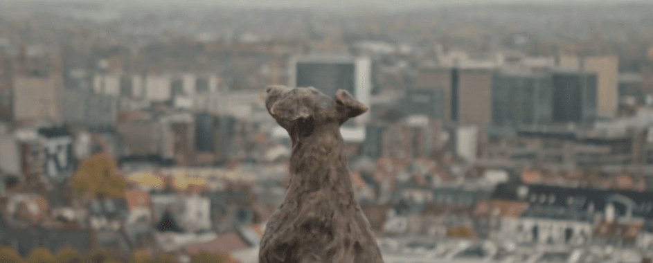 Watched from above: Ghent's newest Tower Guard.